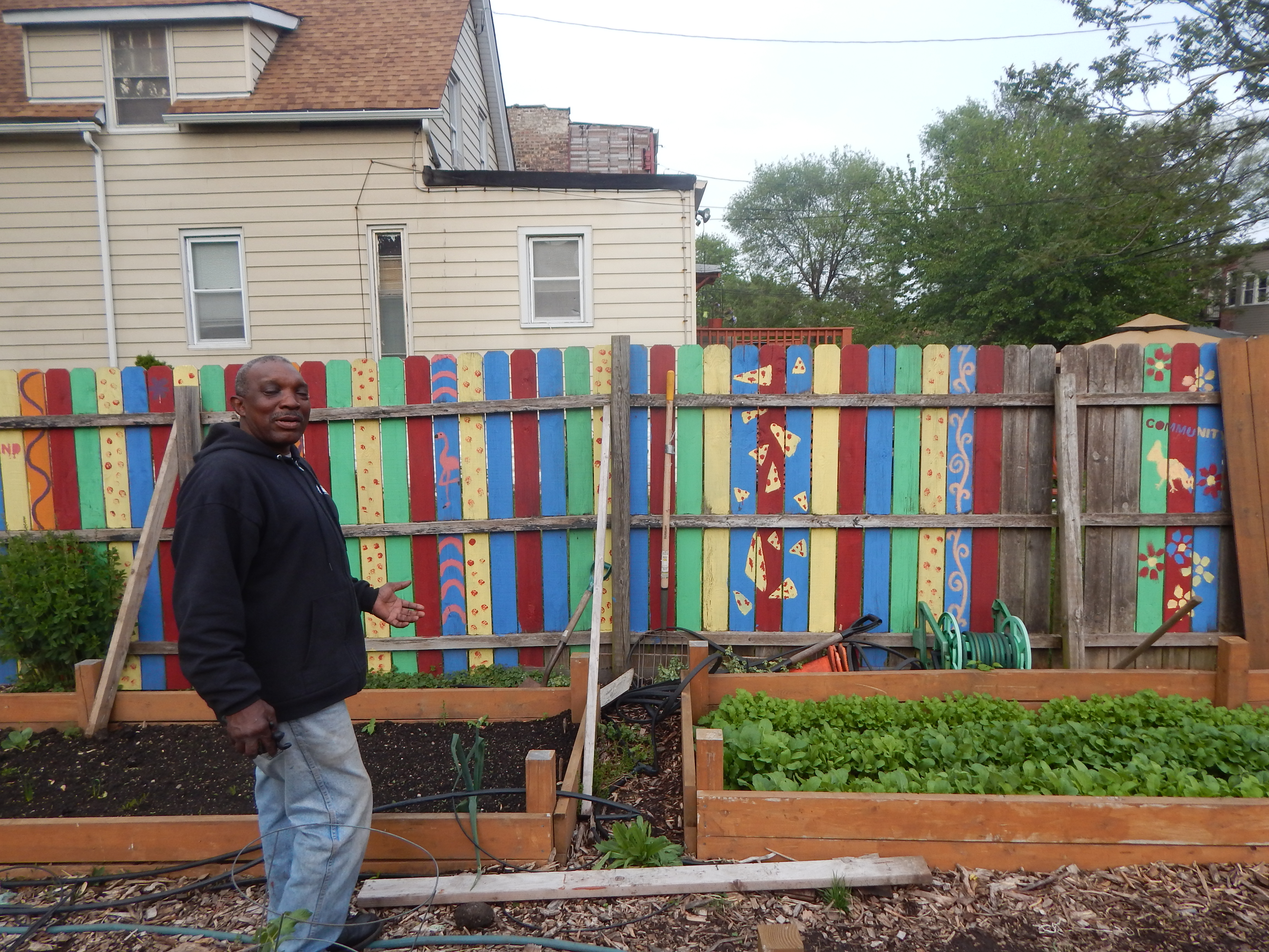 Sam Taylor with his West Garfield Park garden (Darien Boyd, 14 East)